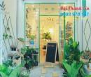 Nội Thất Shop Cây Cảnh Siêu Rẻ